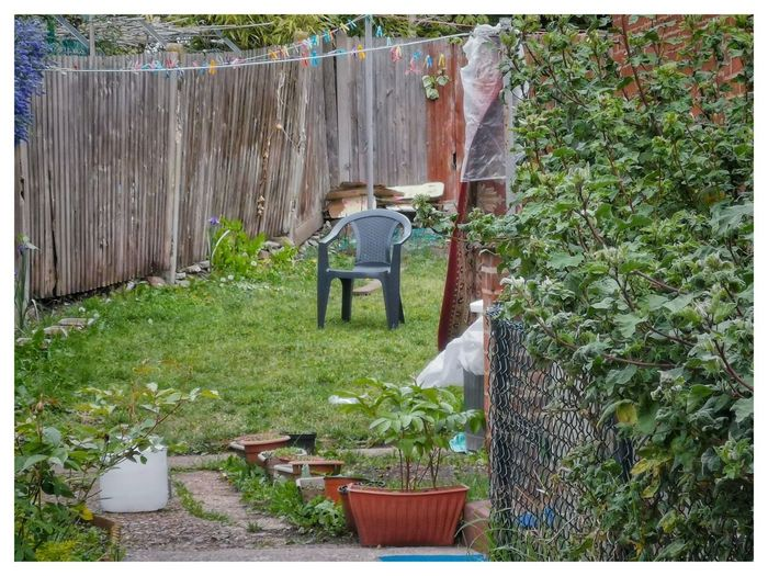 Rear view of woman standing by potted plants in yard