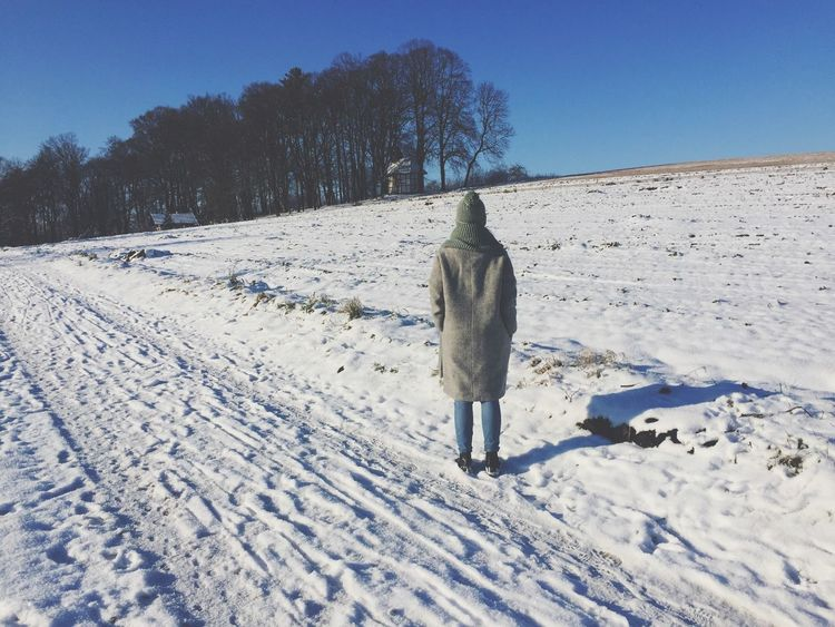 Snow Winter Cold Temperature Nature Weather Rear View Walking Outdoors Day Full Length Clear Sky Coat Scenics Thinking Beauty In Nature Germany Thuringen