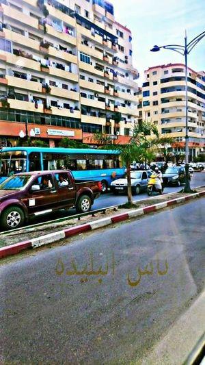 باب الجزائر