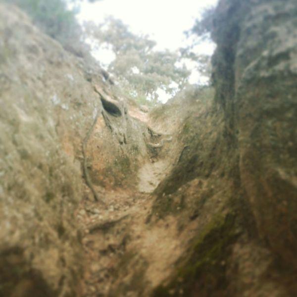 Trailrunning Trail Running Trail Running Les Angles Gard