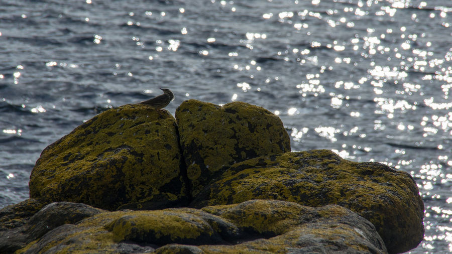 Kildonan Bay,