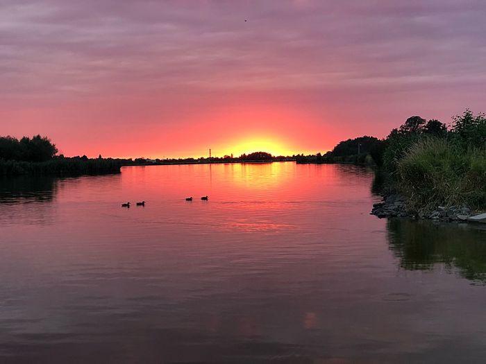 Sunset over my Kluczbork 💥 Zalew Kluczbork Kluczbork Sky Water Sunset Reflection Beauty In Nature Scenics - Nature Lake Tranquility Tranquil Scene Nature Cloud - Sky No People Plant Orange Color Idyllic Romantic Sky Outdoors