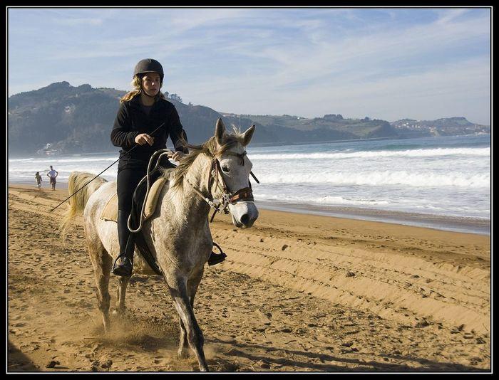 Horse Horse Photography  Horse Riding Playa De Zarautz