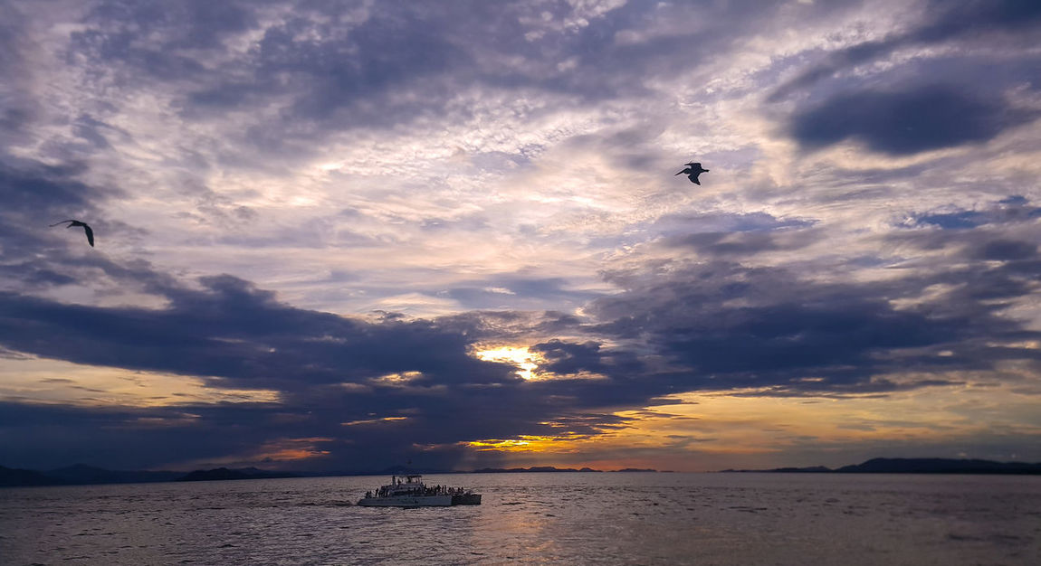 Atardecer Romantico Violeta Beauty In Nature Bird Building Exterior Cloud - Sky Dramatic Sky Flying Horizon Over Water Mid-air Nature Nautical Vessel Outdoors Romantic Sky Romântico♥♥ Scenics Sea Silhouette Sky Sunset Tranquil Scene Tranquility Transportation Water The Week On EyeEm