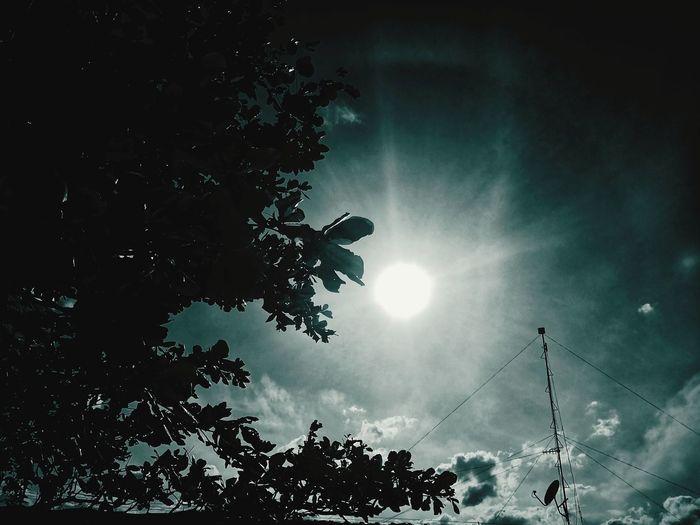 Sun Astronomy
