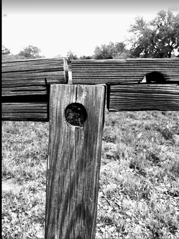 Wood - Material Wooden Post Outdoors Nature Close-up DevineTx Black And White Black & White Black And White Photography BW_photography Blackandwhite Photography Bw_lover Bw_ Collection Ipadphotography Ipadair2 Day Texas Photographer Texas Landscape Southtexas Fence Fencepost Texture Textures And Surfaces Wood Devine