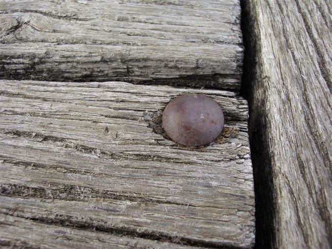 Close-up No People Outdoors Wodden Texture Wood - Material