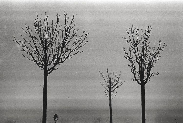 Atmosphere Blackandwhite Clear Sky Cold Temperature Deep Winter Deep Winter #film Film Photography Kodak Landscape Majestic Nature Outdoors Winter