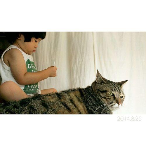 今日も一緒……♥ * わたしがカメラ構えて近づくと、2人の時間を邪魔しにゃいでくれる?と言わんばかりの金太郎のこのお顔。✲ 1歳10ヶ月 男の子 子供 息子 ig_kids22ヶ月ig_oyabakabukids_stagram親バカ親ばか部猫ネコにゃんこぬこ2歳ig_catsnekostagramcatstagramjust_cute_catsminu_the_cat3cat兄弟