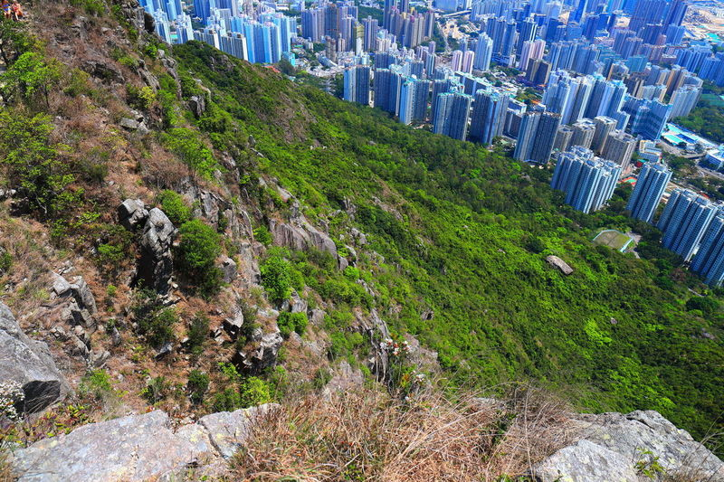 Tadaa Community Hello World Discoverhongkong Water Tree High Angle View Mountain Grass Close-up Green Color Scenics Tranquil Scene Rocky Mountains Go Higher Adventures In The City