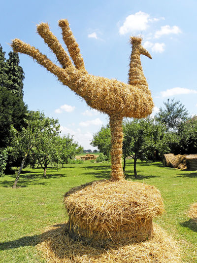 Harvest thanksgiving,Puscina, bird made of straw,3 Animal Beauty In Nature Bird Cloud - Sky Countryside Croatia Day Eu Field Harvest Harvest Thanksgiving Instalation Landscape Medimurje Nature Outdoors Puscine Sculpture Straw Summer Tranquility
