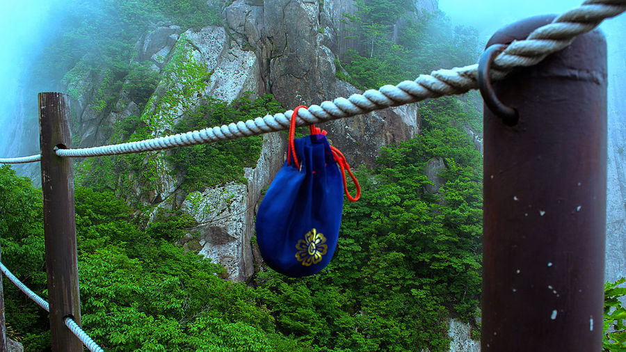 this tiny petty bag photo was taken during hiking Wolchulsan National park, South Korea. Holiday Nature Photography Rope Travel Travel Photography Vacation, Day Day, Glory Hanging Nature_collection Night No People Outdoor Outdoor Photography Outdoors Petty Bag Tiny Bag Trail Travel Destinations Tree