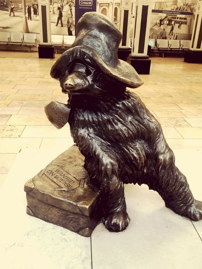 Paddington bear statue at Paddington station Micheal Bond Please Look After This Bear London Train Station Paddington Statue Paddingtonbear Statue Paddington Station Paddington Animal Themes Sitting Sculpture One Animal Dog Indoors  Statue No People Arts Culture And Entertainment Close-up Day
