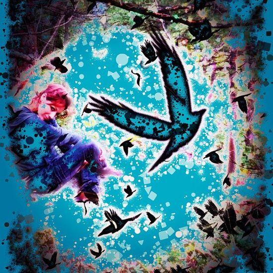 Areographapp Pixapp Poisoned_pics_photography birdsArt Photosoftheday Feature Dailyfeature Weird Jessicapopham