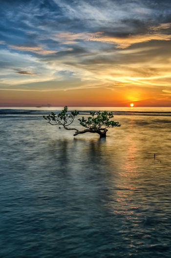 Sorrowing Sunset INDONESIA Beauty In Nature Cloud - Sky Day Horizon Over Water Nature Nautical Vessel No People Outdoors Outrigger Rippled Scenics Sea Silhouette Sky Sunset Tranquil Scene Tranquility Transportation Water Waterfront