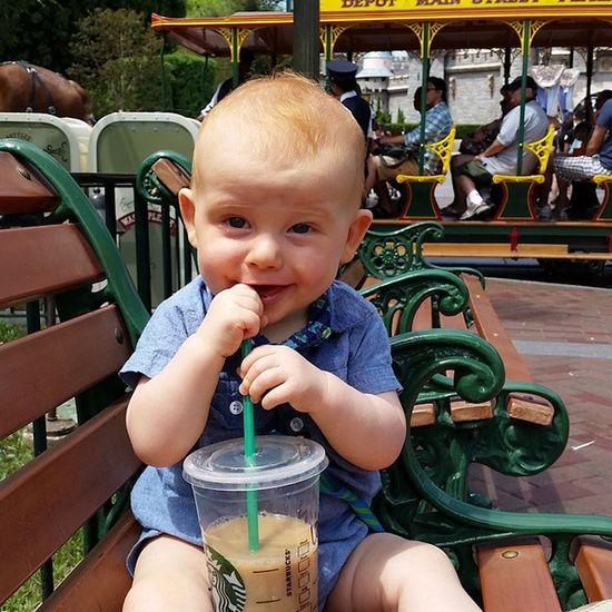 Coffee wasted Disneyland Coffeedate Sophistication Disneyside