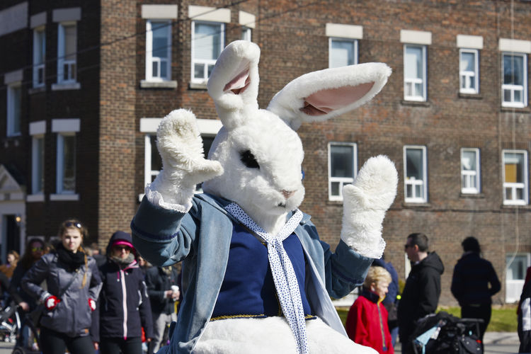 Person In Easter Bunny Costume During Parade In City