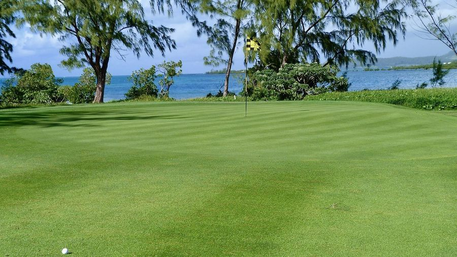 green - golf course in front of blue sea, mauritius Amazing View Beach Beauty In Nature Golf Golf Course Golfball Golfer Golfing Grass Green - Golf Course Green Color Leisure Activity Mauritius Outdoors Scenics Sky Sport Sunlight Travel Destinations Trees Tropical Climate Vacations Water Île Aux Cerfs