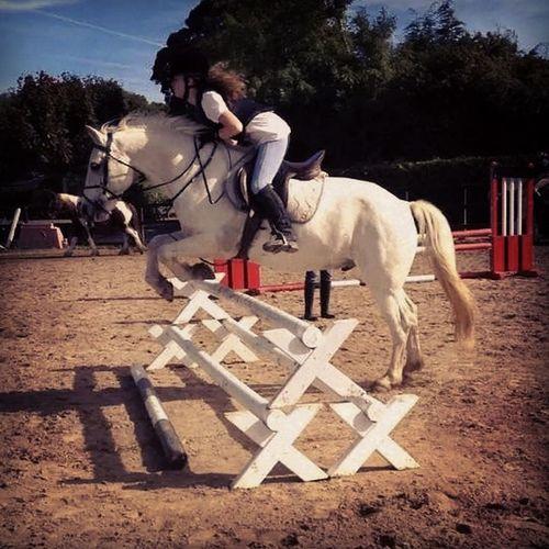 Horseriding! ?? Horses Lovehim Jump Course