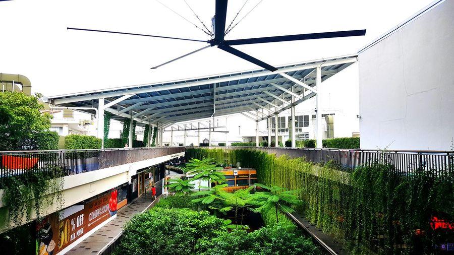 Skyrunning Nature Outdoors City