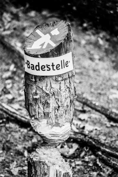 Berlin lake impression Berlin Black & White Badestelle Black And White Capital Letter Close-up Communication Day Drink Focus On Foreground Lakeside No People Outdoors Text Western Script Wood Post