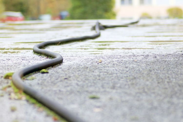 Close-up Day Floor Hose No People Outdoors Rubber Hose Selective Focus Snake Like Wet Floor