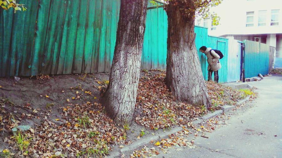 Snoop  Man Streetphotography Fance