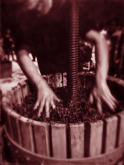 Grapes Wine Wine Cellar Winemaking Real People Blurred Motion Motion Men Occupation Indoors  One Person Working Arts Culture And Entertainment Music Skill  Lifestyles Human Hand People