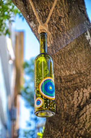 Painted bottle Alcohol Animal Animal Themes Bottle Close-up Container Day Drink Focus On Foreground Food And Drink Hanging Nature No People Plant Refreshment Tree Tree Trunk Trunk Wine Bottle Wood - Material