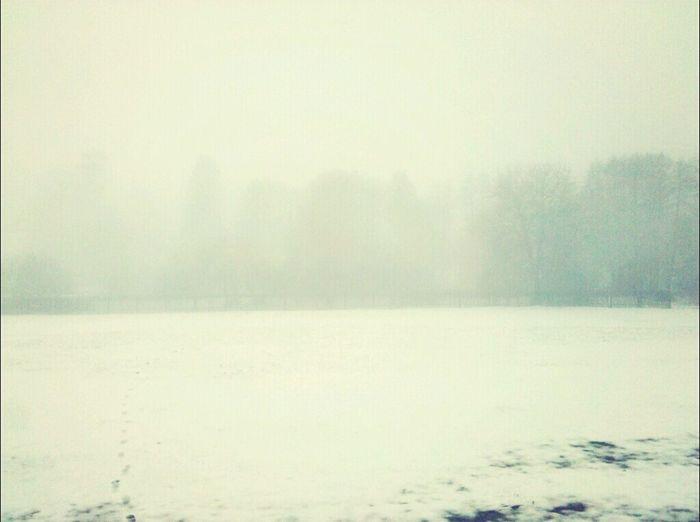 Čistý vzduch na venkově (bez filtru)