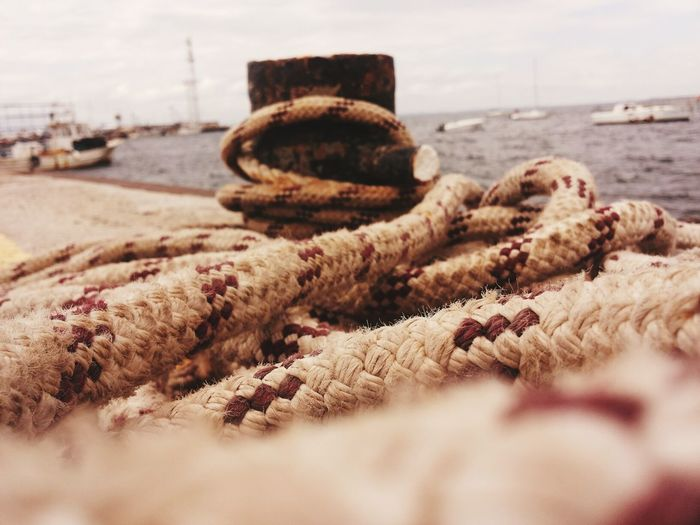 Ropes Seascape Seascape Photography Landscape Chill Photography Photographer Rope Ropes Boats Ships Ship Water Ocean Sea Moored Harbor Longtail Boat Dock Fishing Boat Fishing Industry Port Shore Ocean Horizon Over Water Calm