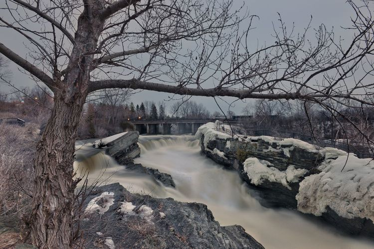 River flowing amidst bare trees against sky