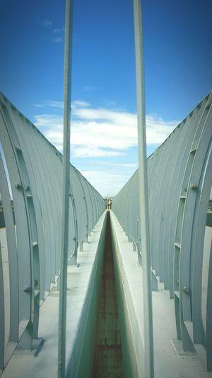 Showcase: February Bridge Butterfly 鵬灣跨海大橋 Horizon Destiny Vertical Lines Railings Banister