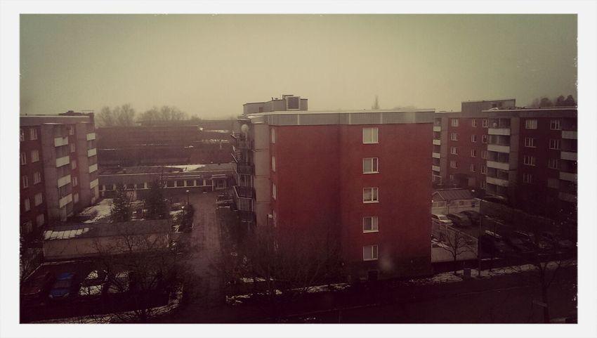 a rainy slightly foggy day Walking Around