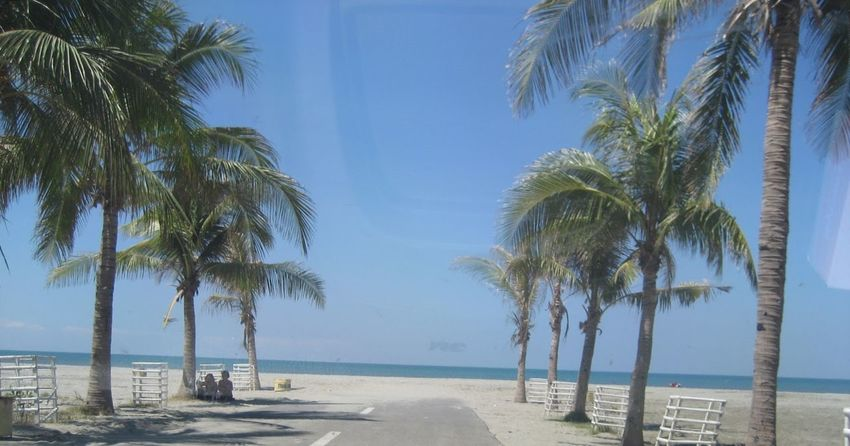 Beach Beauty In Nature Blue Coconut Palm Tree Day Growth Horizon Over Water Idyllic Lingayen Pangasinan Nature Outdoors Palm Tree Scenics Sea Shore Sky Sunlight Tourism Tranquil Scene Tranquility Tree Tree Trunk Tropical Climate Vacations Water