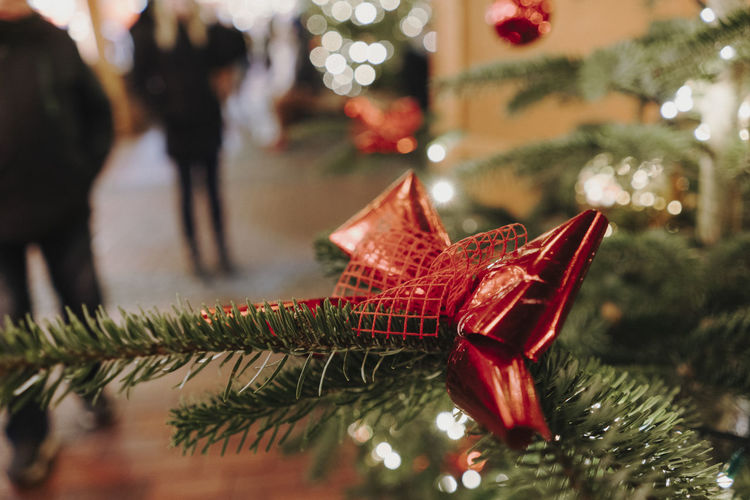 Christmas Market Germany Christmas Christmas Market Christmas Decoration Christmas Lights Holiday Celebration christmas tree Decoration Tree Christmas Ornament Star Shape Holiday - Event Focus On Foreground Celebration Event Event Illuminated Incidental People Real People Gift Outdoors