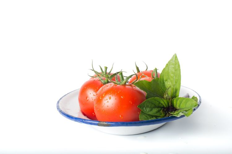 Close-up of tomatoes in bowl against white background
