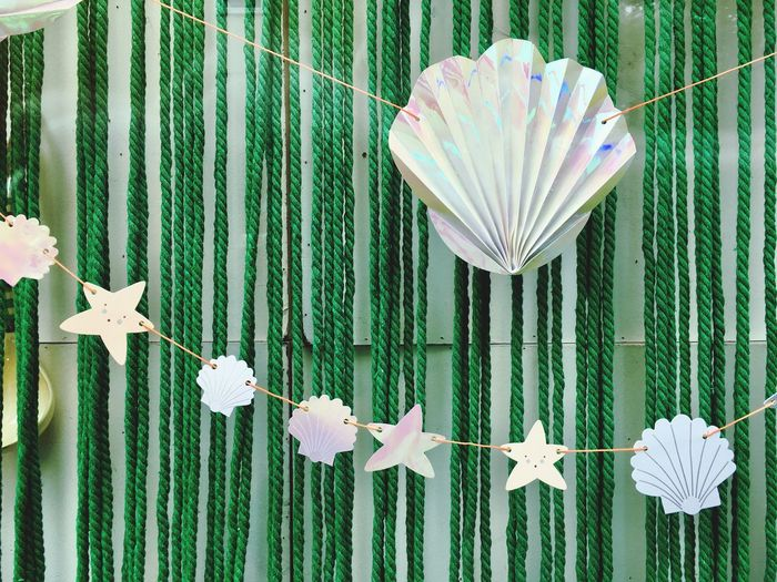 Shell Stars Green Color White Color Decoration White And Green Background Texture