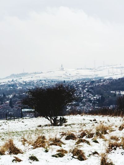 Hartshead Pike Hartshead Pike Tameside Gorse Hall Stalybridge Snow Winter Cold Temperature Weather Polar Climate Nature Frozen Beauty In Nature Snowing Tranquil Scene Landscape Environment Outdoors Snowcapped Mountain Mountain