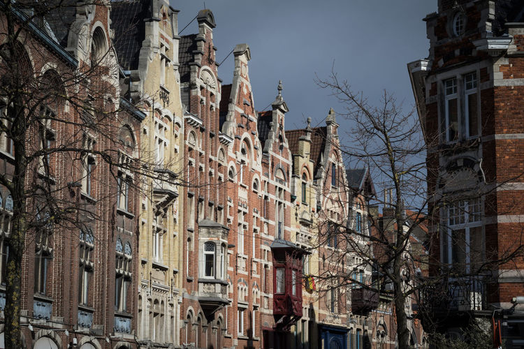 Flemish Architecture Revival in Ghent, Belgium Gent Ghent Ghent,Belgium Belgium Belgie Belgique Vlaanderen Flanders Architecture Built Structure Building Exterior Building Sky No People Outdoors Day Tree City Residential District Low Angle View Bare Tree Window Town Street Branch Neighborhood Location Place Old