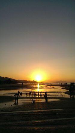 23.11.2014 Sunset