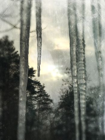Sun begging icicles. Outdoors No People Beauty In Nature Cold Temperature IPhoneography IPhone Only Fine Art Photography Atmospheric Mood