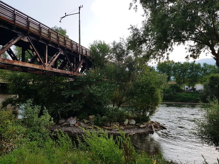 Adda-river Nofilter River Bridge Bridge On The River Adda River Northen Italy Tree Water
