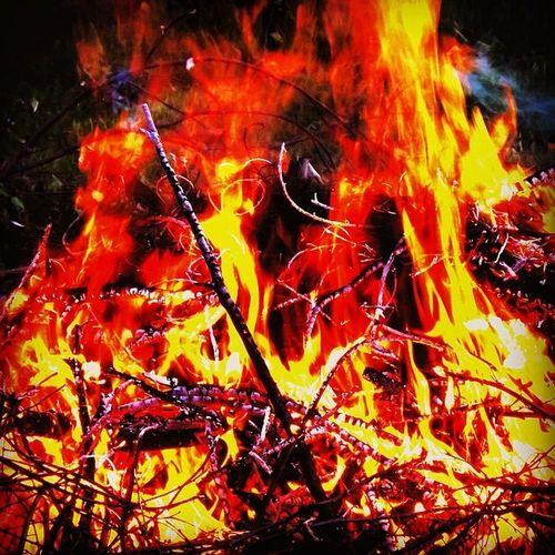 Fire Bigfire Brofire