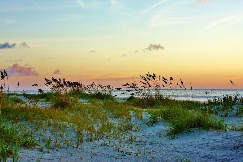 Dawn Atlantic
