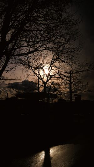 #Dark #clouds  #sky #Pain Tree Silhouette Sky Night No People Outdoors Nature Beauty In Nature