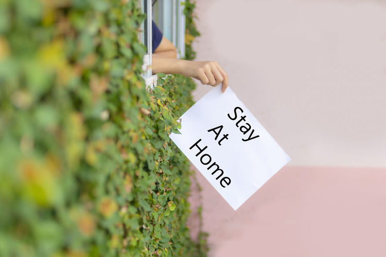 Midsection of person holding text on plant