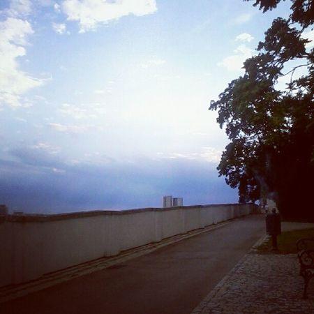 Paradise Grebovka Top Weather me girlfriend sangria instagram