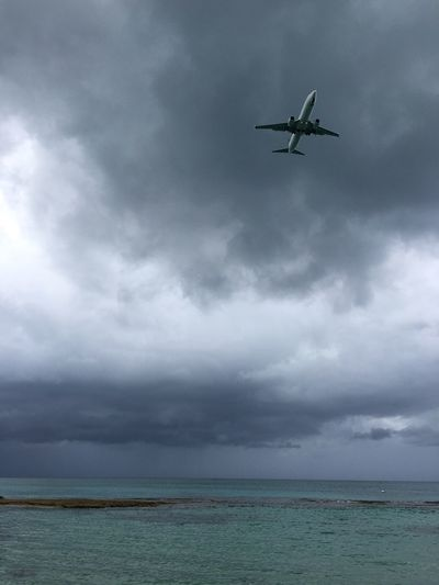 Low angle view of airplane flying over sea