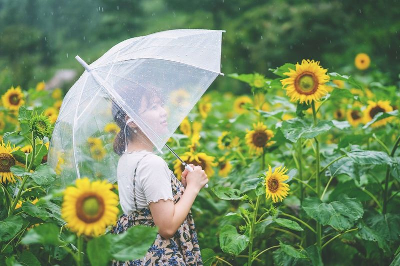Close-Up Of Woman Holding Umbrella In Field